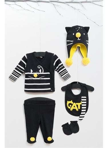 Wogi Baby Wogi Baby Cats On 5'li Hastane Çıkışı 5334 Renkli